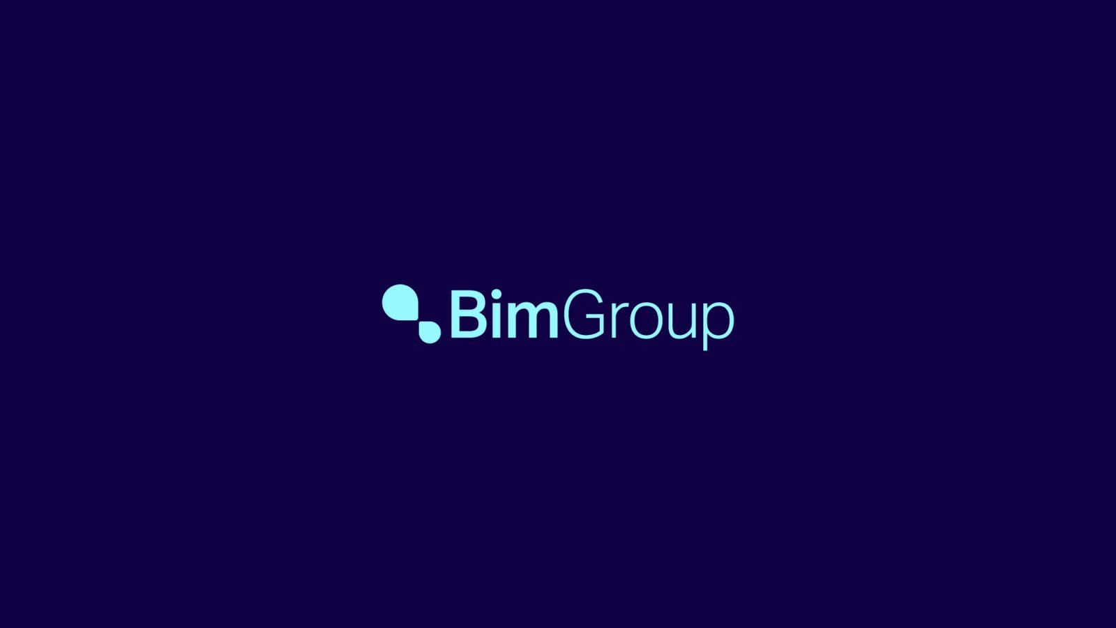 Bim Group Professional Services Brand Identity Wordmark by Bullhorn Creative