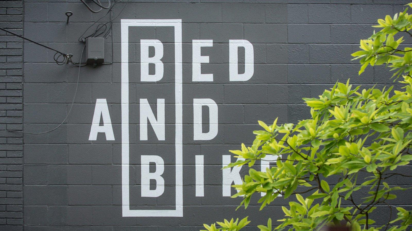 Mural for Boutique Hotel Branding for Bed and Bike