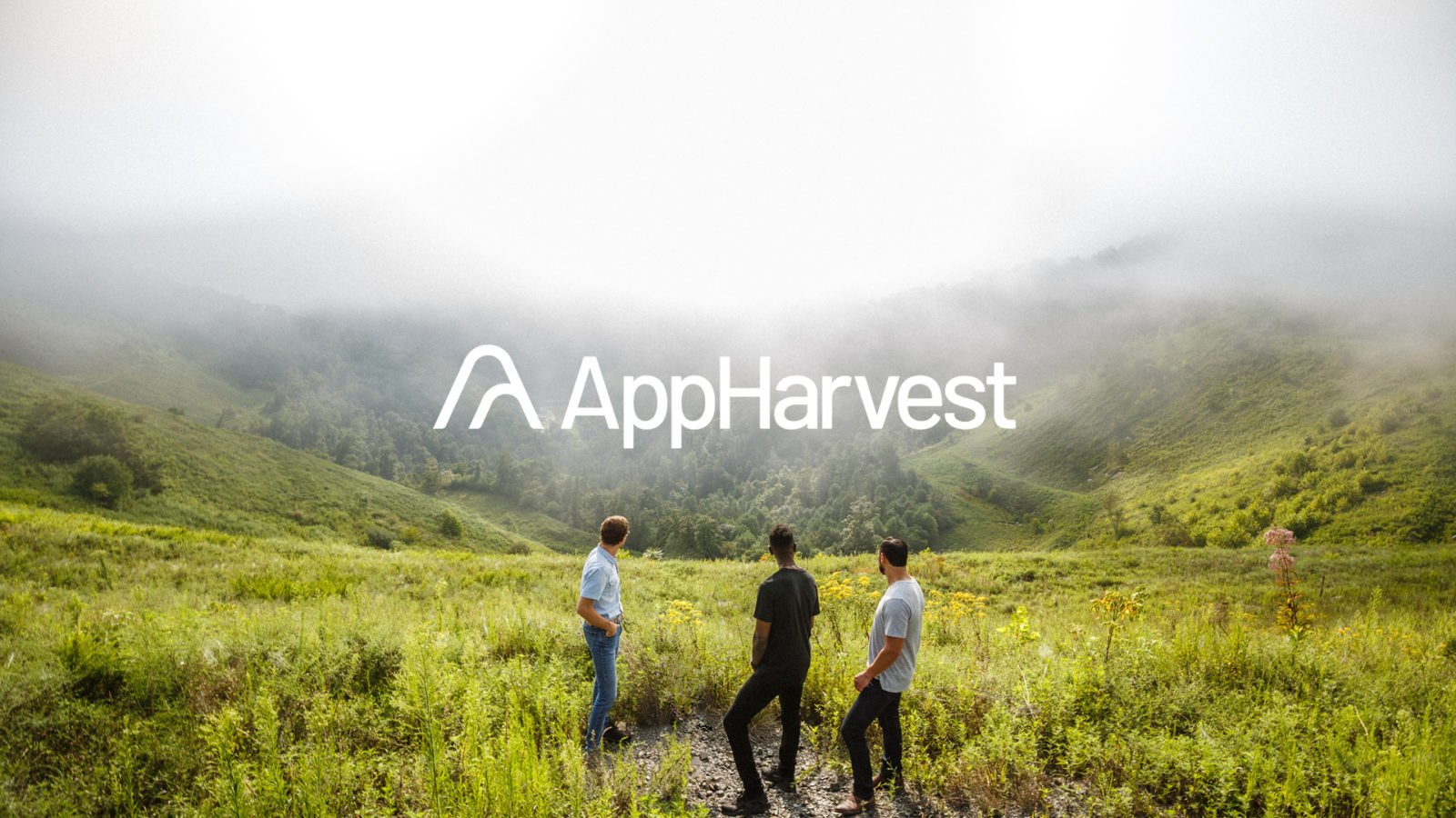 Brand identity for AppHarvest, a high tech Appalachian greenhouse startup